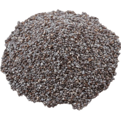 Semințe mac 100g - GustOriental.ro