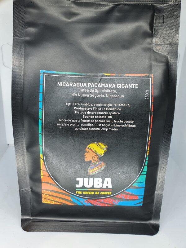 Nicaragua cafea de specialitate 1